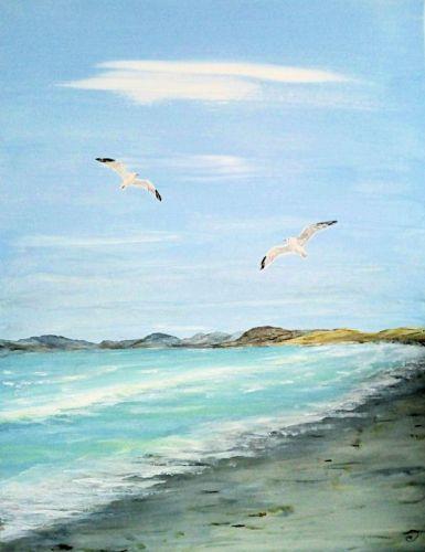 Strand - Meeuw