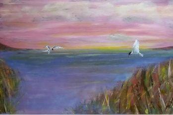 Water - Vogels