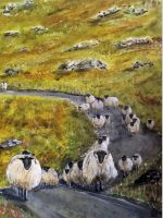 Walking sheep